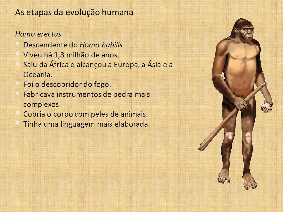As etapas da evolução humana Homo erectus Descendente do Homo habilis Viveu há 1,8 milhão de anos. Saiu da África e alcançou a Europa, a Ásia e a Ocea