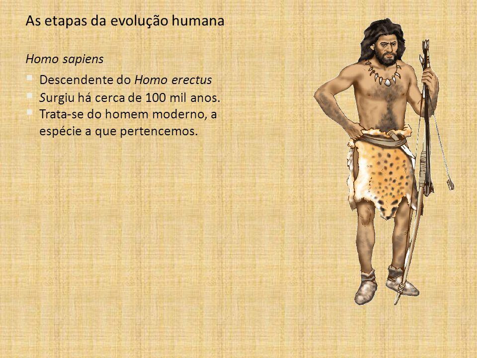As etapas da evolução humana Homo sapiens Descendente do Homo erectus Surgiu há cerca de 100 mil anos. Trata-se do homem moderno, a espécie a que pert