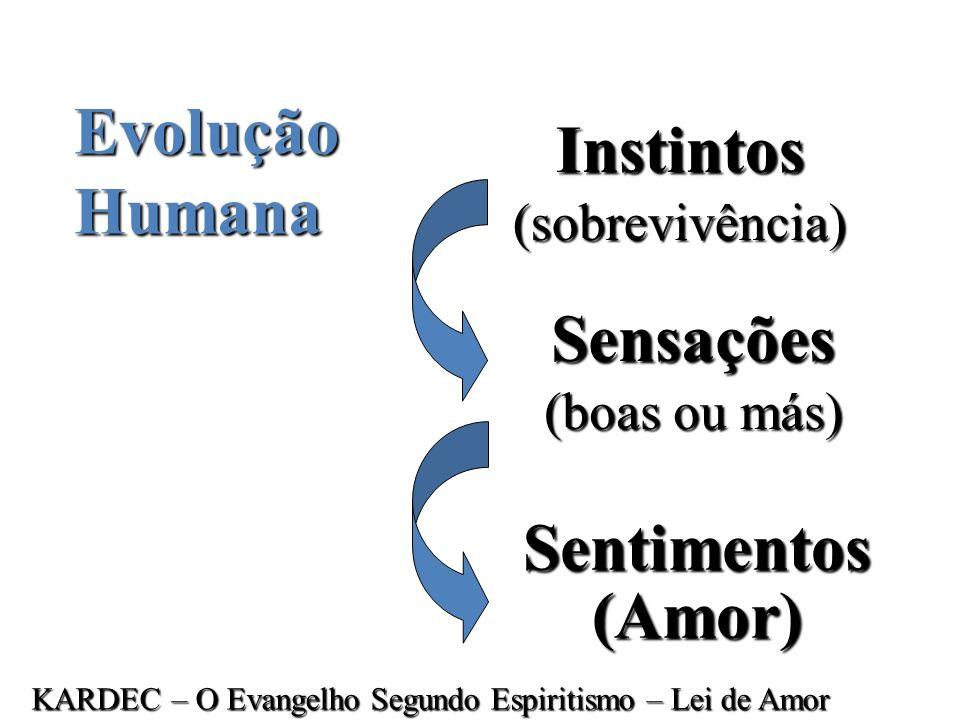 O ego focaliza a consciência humana e confere à nossa conduta consciente sua determinação e direção. Porque temos um ego, possuímos a liberdade para f