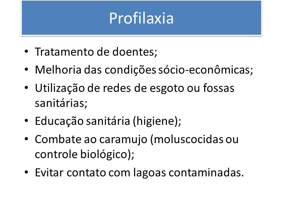 Profilaxia Tratamento de doentes; Melhoria das condições sócio-econômicas; Utilização de redes de esgoto ou fossas sanitárias; Educação sanitária (hig