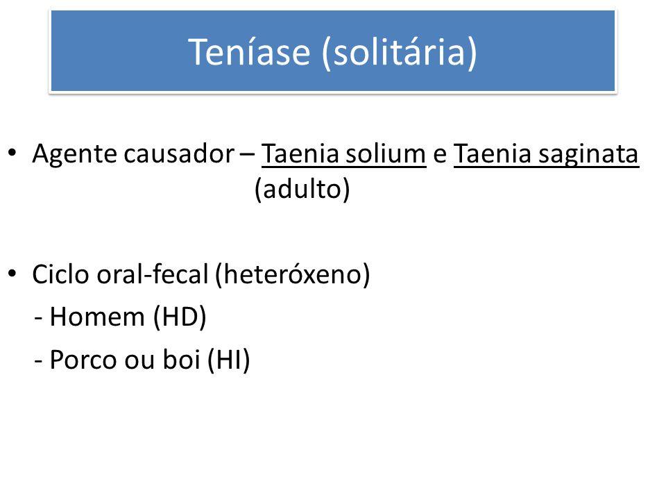 Teníase (solitária) Agente causador – Taenia solium e Taenia saginata (adulto) Ciclo oral-fecal (heteróxeno) - Homem (HD) - Porco ou boi (HI)