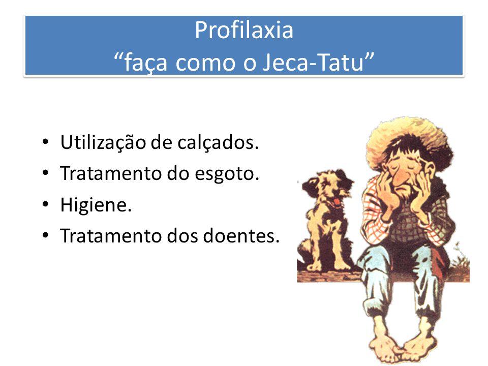 Profilaxia faça como o Jeca-Tatu Utilização de calçados. Tratamento do esgoto. Higiene. Tratamento dos doentes.