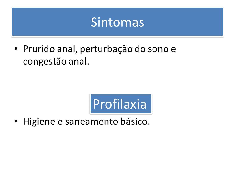 Sintomas Prurido anal, perturbação do sono e congestão anal. Higiene e saneamento básico. Profilaxia