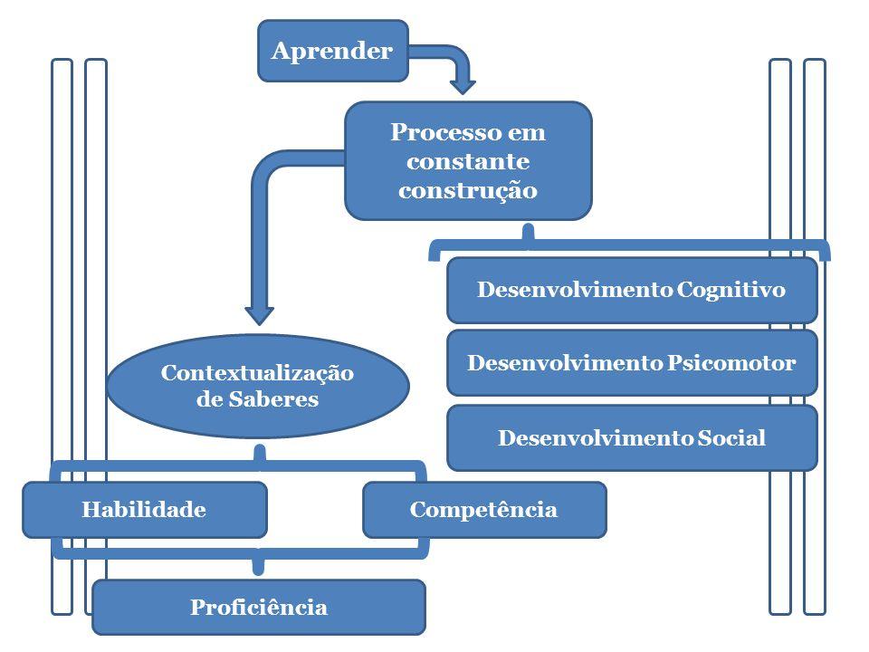 Desenvolvimento Cognitivo Desenvolvimento Psicomotor Desenvolvimento Social Processo em constante construção Contextualização de Saberes Proficiência Competência Habilidade Aprender