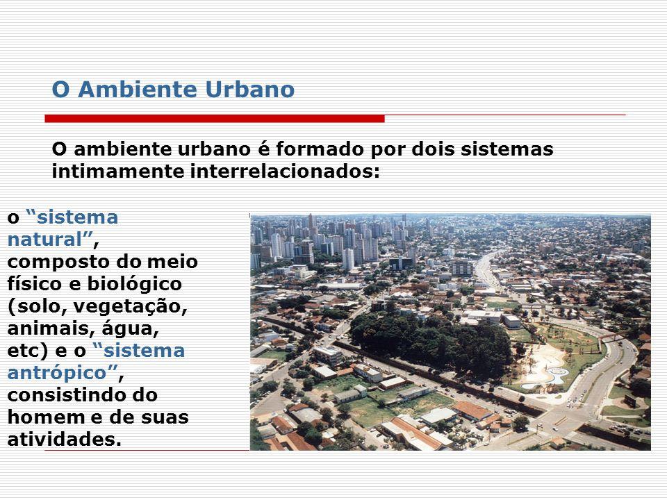 A cidade pode ser vista como um sistema aberto, que troca materiais e energia com outros ambientes, para atender às necessidades do homem, resultando na produção de resíduos que são lançados, geralmente, na área urbana, gerando problemas ambientais.