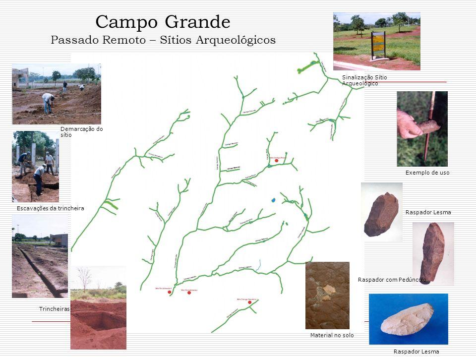 Campo Grande Passado Remoto – Sítios Arqueológicos Sinalização Sítio Arqueológico Exemplo de uso Raspador com Pedúnculo Raspador Lesma Material no sol