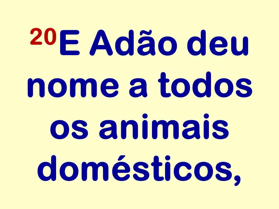 20 E Adão deu nome a todos os animais domésticos,