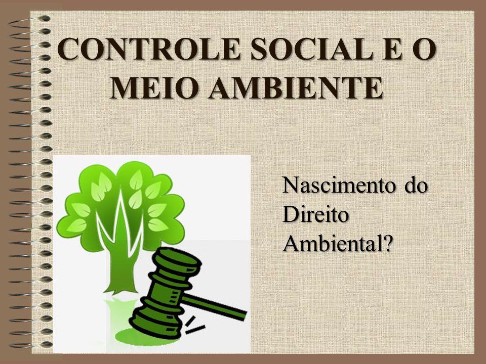 CONTROLE SOCIAL E O MEIO AMBIENTE Nascimento do Direito Ambiental?