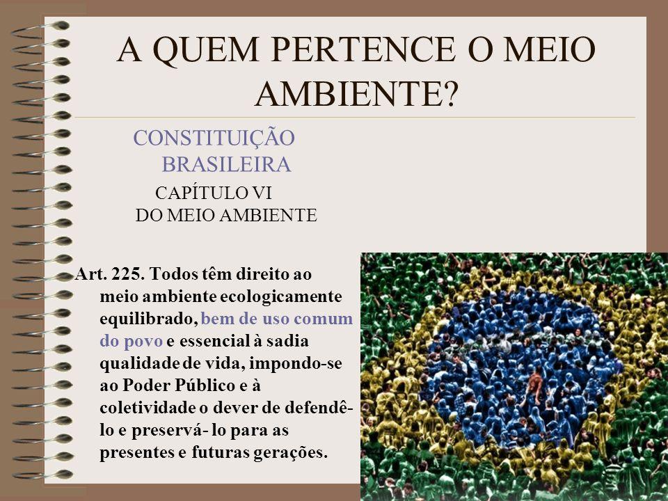 A QUEM PERTENCE O MEIO AMBIENTE? CONSTITUIÇÃO BRASILEIRA CAPÍTULO VI DO MEIO AMBIENTE Art. 225. Todos têm direito ao meio ambiente ecologicamente equi