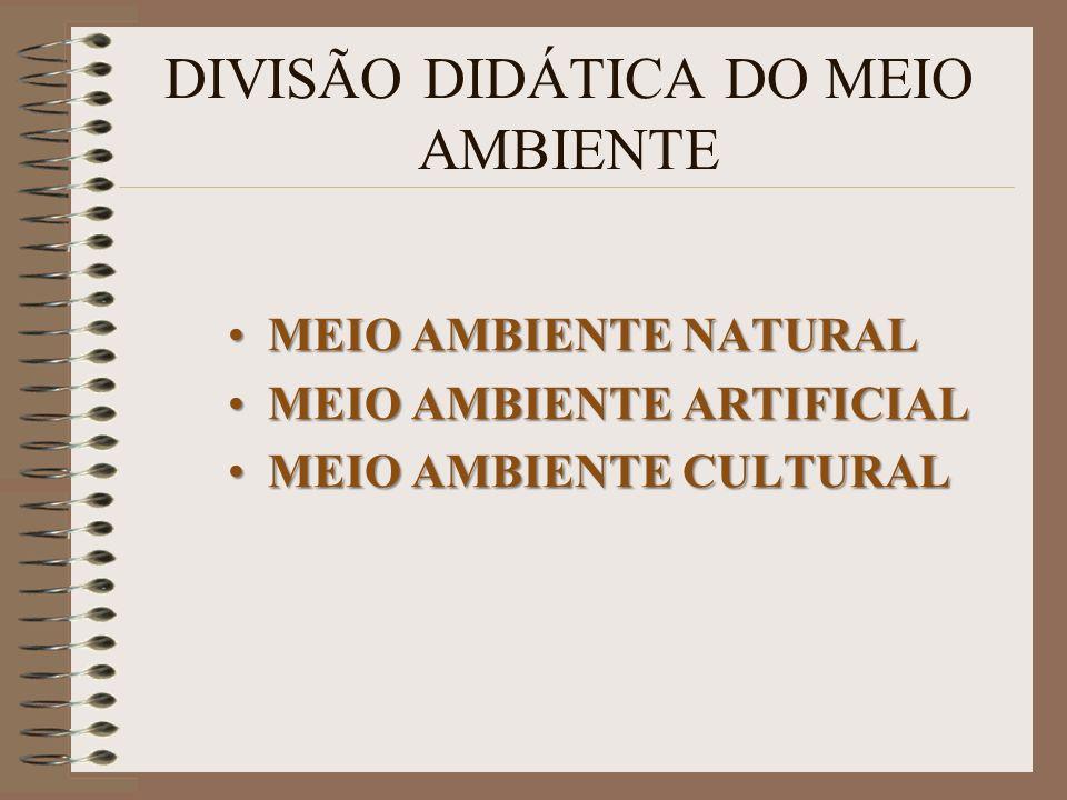 DIVISÃO DIDÁTICA DO MEIO AMBIENTE MEIO AMBIENTE NATURALMEIO AMBIENTE NATURAL MEIO AMBIENTE ARTIFICIALMEIO AMBIENTE ARTIFICIAL MEIO AMBIENTE CULTURALME
