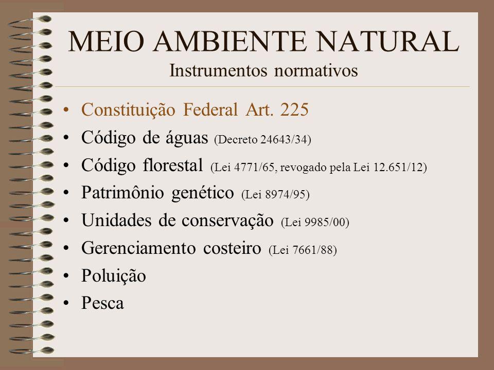 MEIO AMBIENTE NATURAL Instrumentos normativos Constituição Federal Art. 225 Código de águas (Decreto 24643/34) Código florestal (Lei 4771/65, revogado