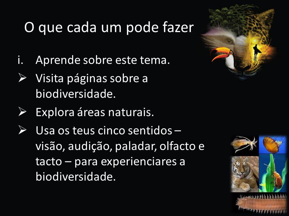 O que cada um pode fazer i.Aprende sobre este tema. Visita páginas sobre a biodiversidade. Explora áreas naturais. Usa os teus cinco sentidos – visão,