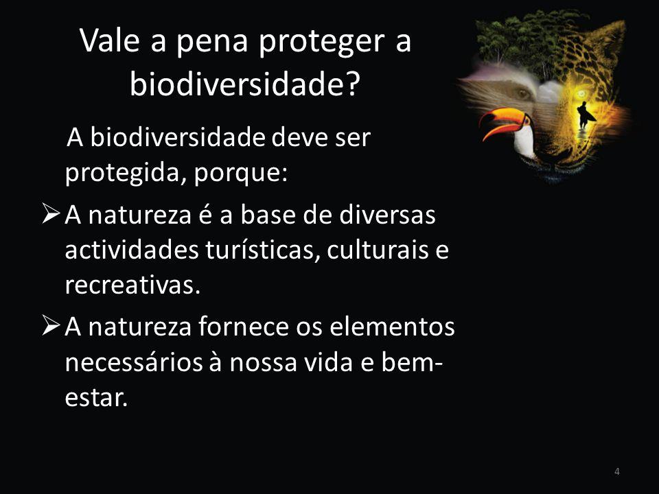 Vale a pena proteger a biodiversidade? A biodiversidade deve ser protegida, porque: A natureza é a base de diversas actividades turísticas, culturais