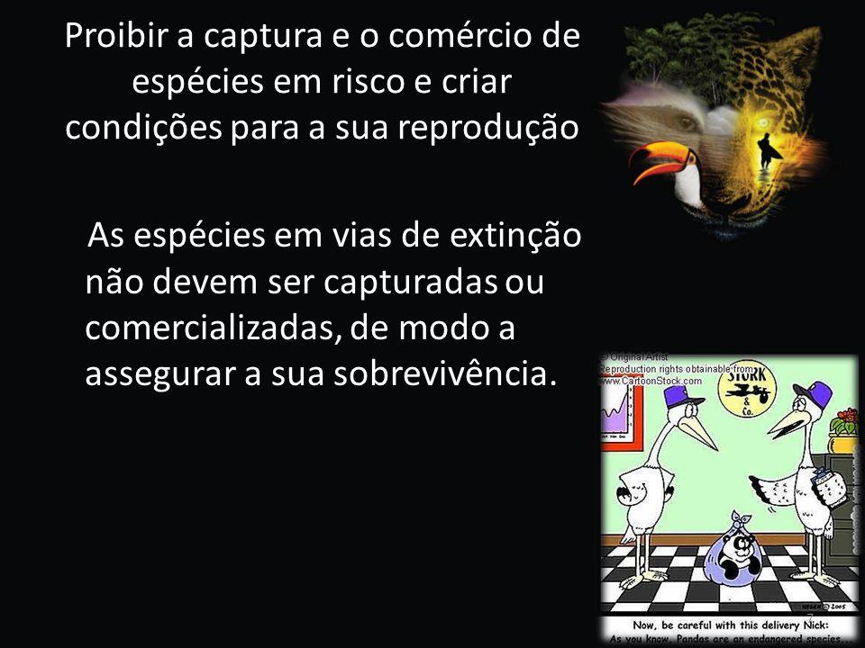 Proibir a captura e o comércio de espécies em risco e criar condições para a sua reprodução As espécies em vias de extinção não devem ser capturadas o