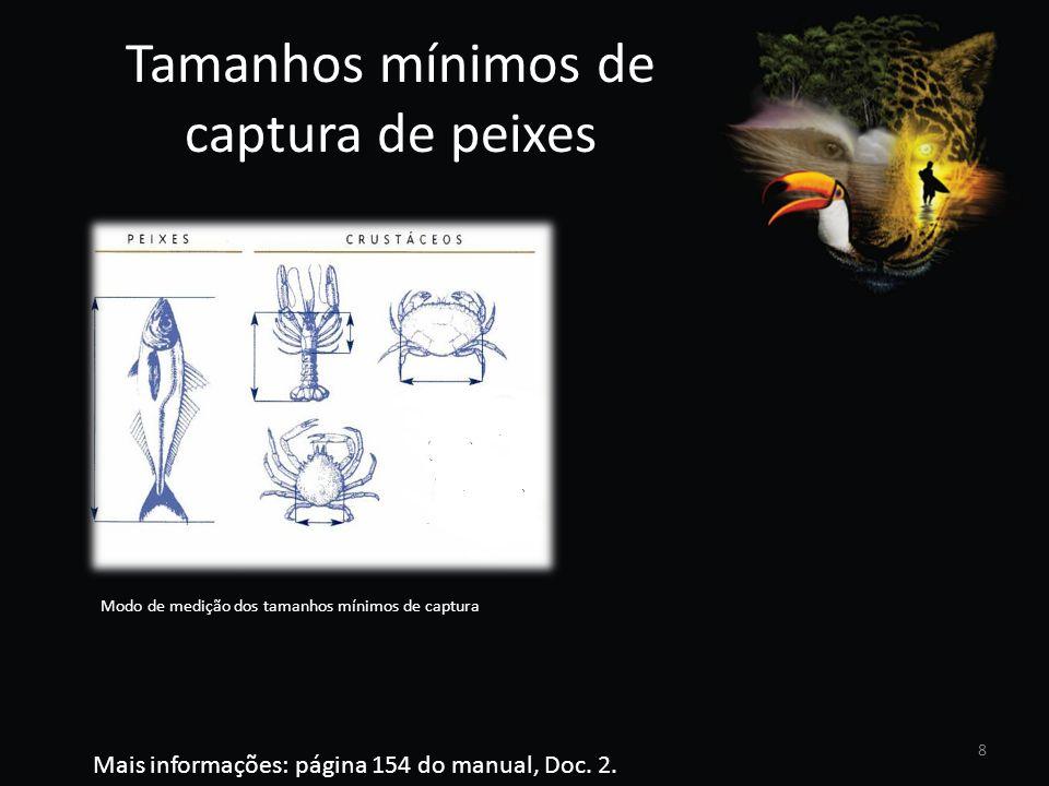 Tamanhos mínimos de captura de peixes Modo de medição dos tamanhos mínimos de captura Mais informações: página 154 do manual, Doc. 2. 8