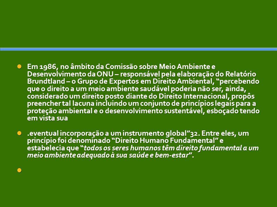 Em 1986, no âmbito da Comissão sobre Meio Ambiente e Desenvolvimento da ONU – responsável pela elaboração do Relatório Brundtland – o Grupo de Expertos em Direito Ambiental, percebendo que o direito a um meio ambiente saudável poderia não ser, ainda, considerado um direito posto diante do Direito Internacional, propôs preencher tal lacuna incluindo um conjunto de princípios legais para a proteção ambiental e o desenvolvimento sustentável, esboçado tendo em vista sua Em 1986, no âmbito da Comissão sobre Meio Ambiente e Desenvolvimento da ONU – responsável pela elaboração do Relatório Brundtland – o Grupo de Expertos em Direito Ambiental, percebendo que o direito a um meio ambiente saudável poderia não ser, ainda, considerado um direito posto diante do Direito Internacional, propôs preencher tal lacuna incluindo um conjunto de princípios legais para a proteção ambiental e o desenvolvimento sustentável, esboçado tendo em vista sua.eventual incorporação a um instrumento global32.
