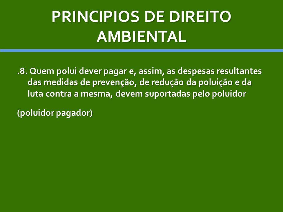 PRINCIPIOS DE DIREITO AMBIENTAL.8. Quem polui dever pagar e, assim, as despesas resultantes das medidas de prevenção, de redução da poluição e da luta