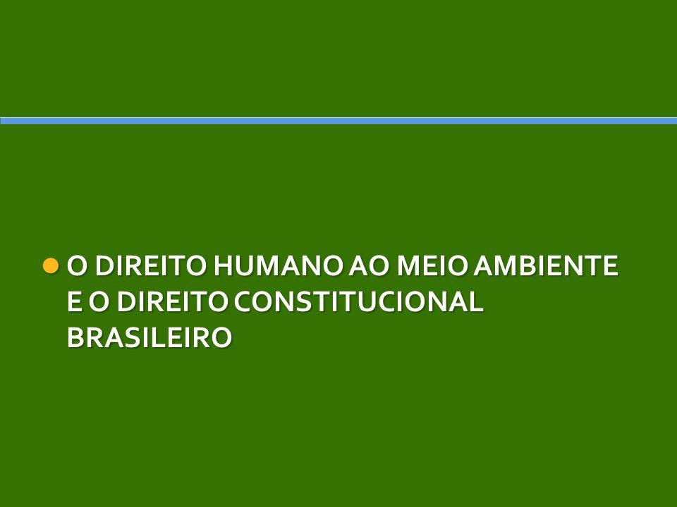 O DIREITO HUMANO AO MEIO AMBIENTE E O DIREITO CONSTITUCIONAL BRASILEIRO O DIREITO HUMANO AO MEIO AMBIENTE E O DIREITO CONSTITUCIONAL BRASILEIRO