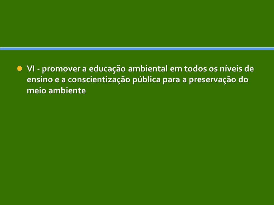 VI - promover a educação ambiental em todos os níveis de ensino e a conscientização pública para a preservação do meio ambiente VI - promover a educação ambiental em todos os níveis de ensino e a conscientização pública para a preservação do meio ambiente