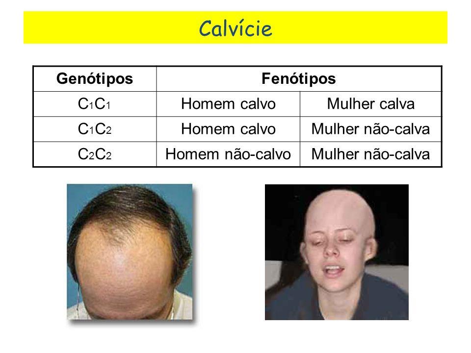 GenótiposFenótipos C1C1C1C1 Homem calvoMulher calva C1C2C1C2 Homem calvoMulher não-calva C2C2C2C2 Homem não-calvoMulher não-calva Calvície