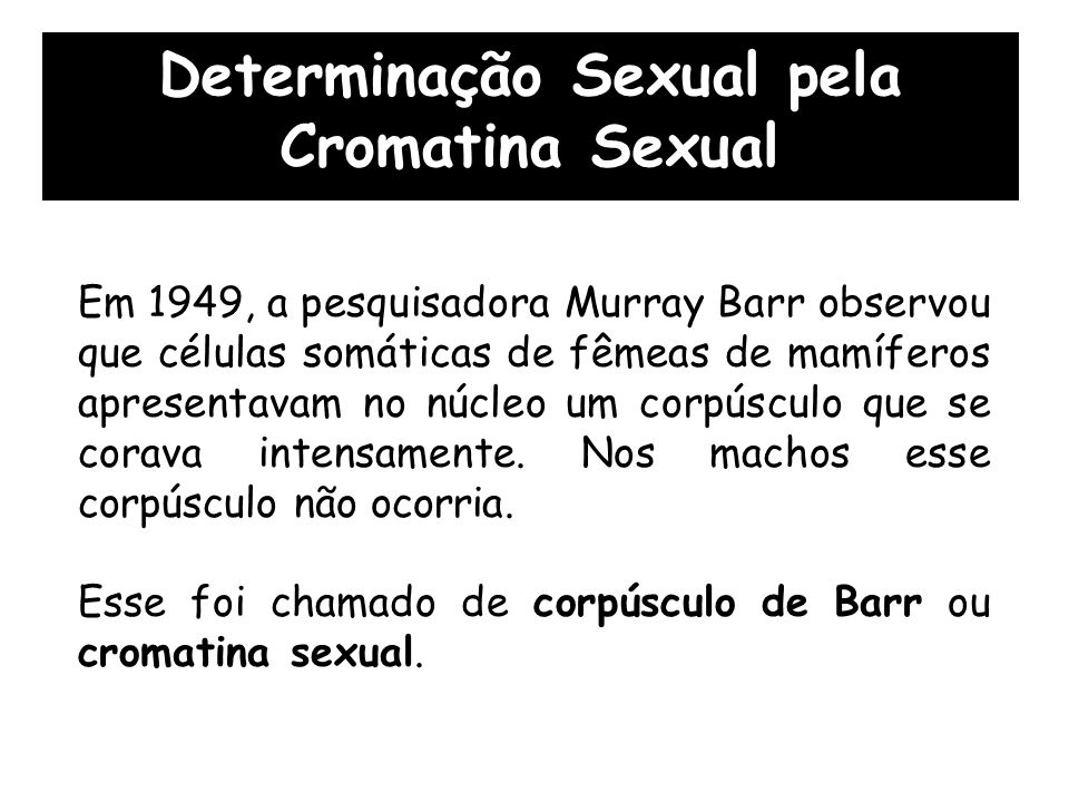 Em 1949, a pesquisadora Murray Barr observou que células somáticas de fêmeas de mamíferos apresentavam no núcleo um corpúsculo que se corava intensamente.