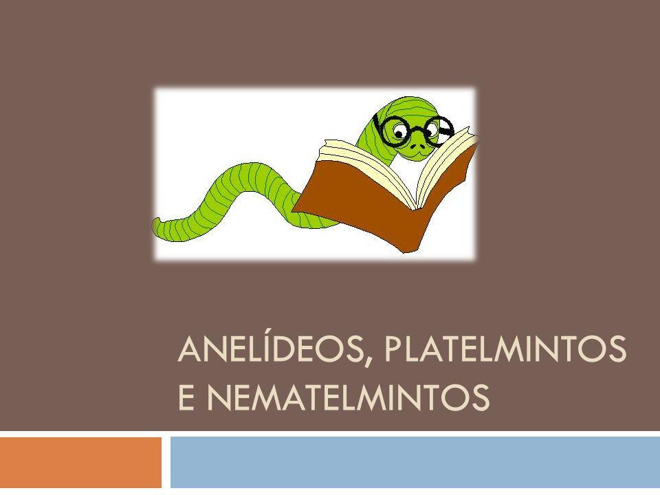 ANELÍDEOS, PLATELMINTOS E NEMATELMINTOS