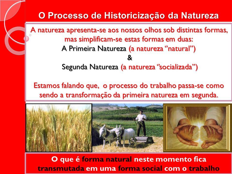 O Processo de Historicização da Natureza A natureza apresenta-se aos nossos olhos sob distintas formas, mas simplificam-se estas formas em duas: A Pri