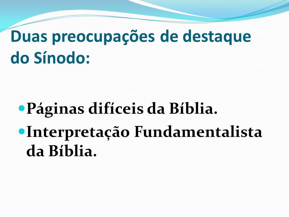 Duas preocupações de destaque do Sínodo: Páginas difíceis da Bíblia. Interpretação Fundamentalista da Bíblia.