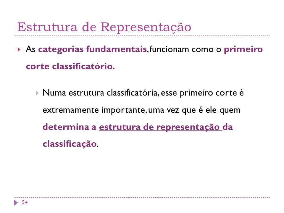 Estrutura de Representação As categorias fundamentais, funcionam como o primeiro corte classificatório. Numa estrutura classificatória, esse primeiro