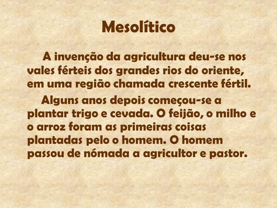 Mesolítico A invenção da agricultura deu-se nos vales férteis dos grandes rios do oriente, em uma região chamada crescente fértil. Alguns anos depois