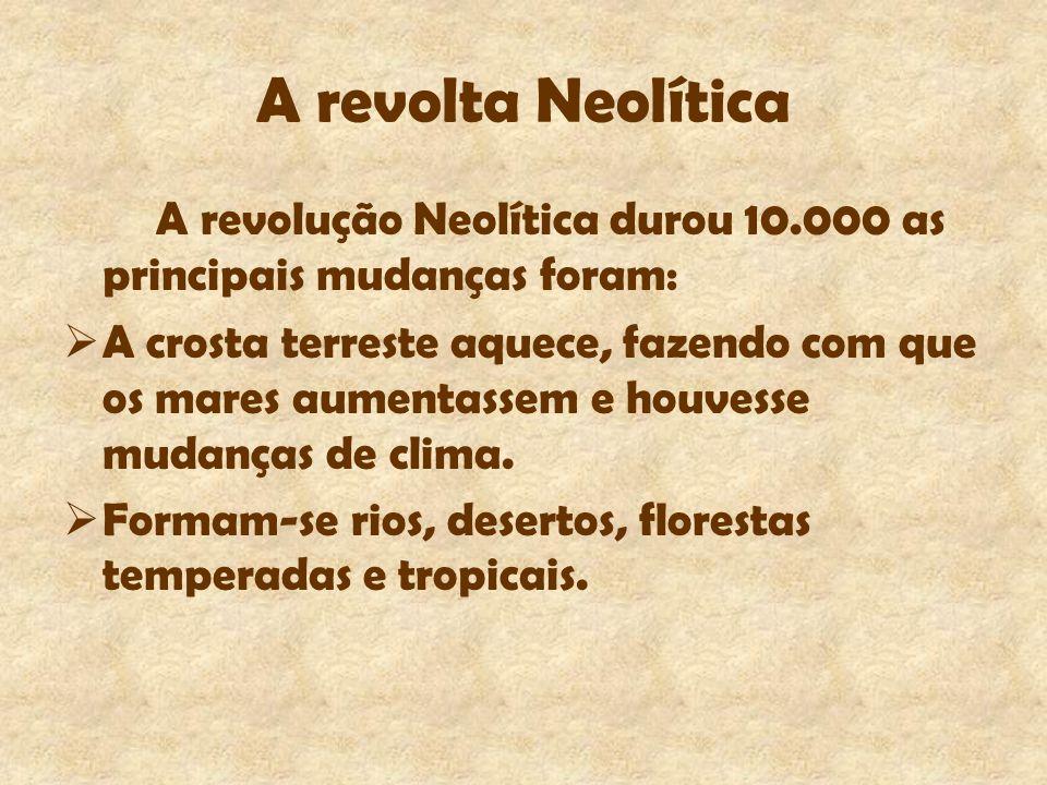 A revolta Neolítica A revolução Neolítica durou 10.000 as principais mudanças foram: A crosta terreste aquece, fazendo com que os mares aumentassem e