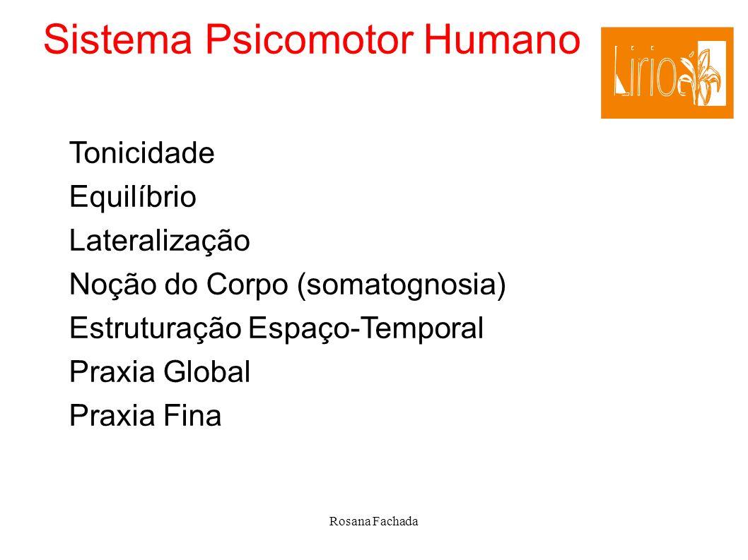 Rosana Fachada Sistema Psicomotor Humano Tonicidade Equilíbrio Lateralização Noção do Corpo (somatognosia) Estruturação Espaço-Temporal Praxia Global