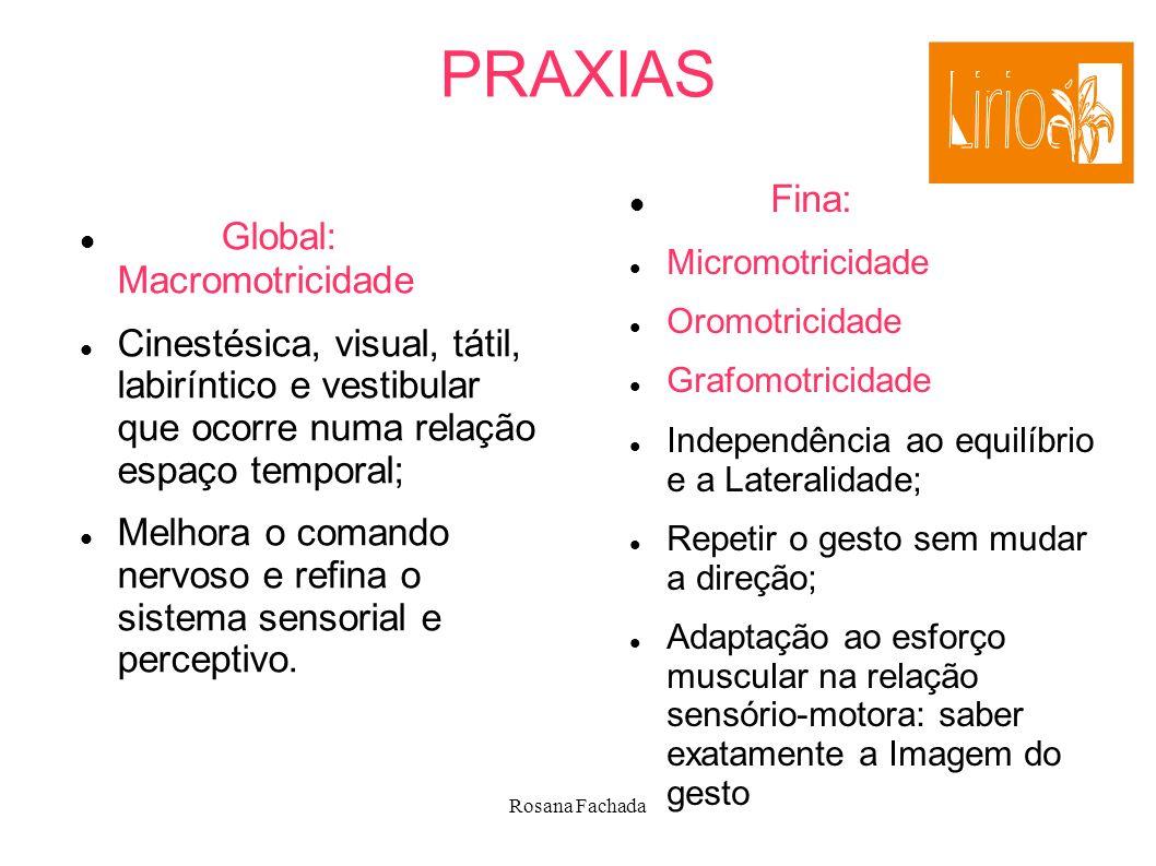 Rosana Fachada PRAXIAS Global: Macromotricidade Cinestésica, visual, tátil, labiríntico e vestibular que ocorre numa relação espaço temporal; Melhora