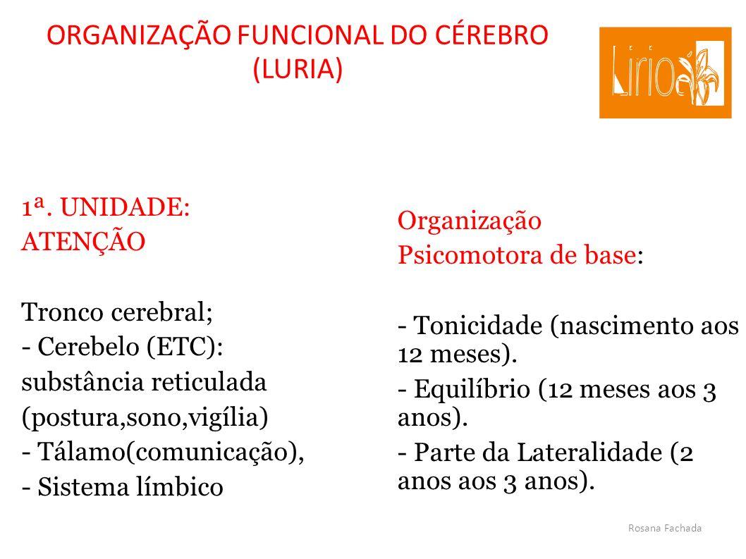 Rosana Fachada ORGANIZAÇÃO FUNCIONAL DO CÉREBRO (LURIA) 1ª. UNIDADE: ATENÇÃO Tronco cerebral; - Cerebelo (ETC): substância reticulada (postura,sono,vi