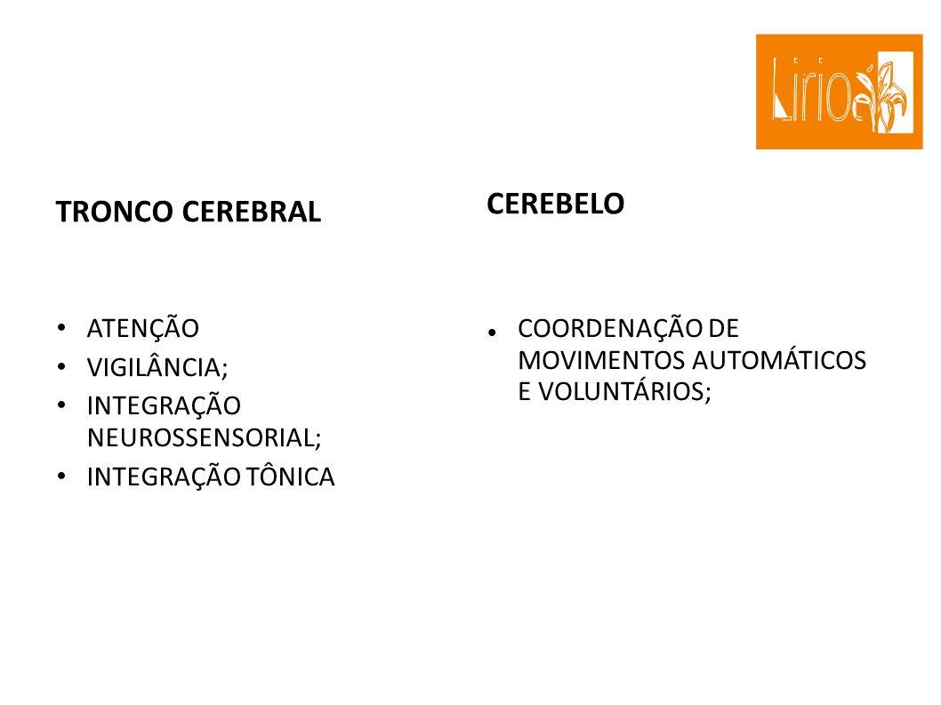 TRONCO CEREBRAL ATENÇÃO VIGILÂNCIA; INTEGRAÇÃO NEUROSSENSORIAL; INTEGRAÇÃO TÔNICA CEREBELO COORDENAÇÃO DE MOVIMENTOS AUTOMÁTICOS E VOLUNTÁRIOS;