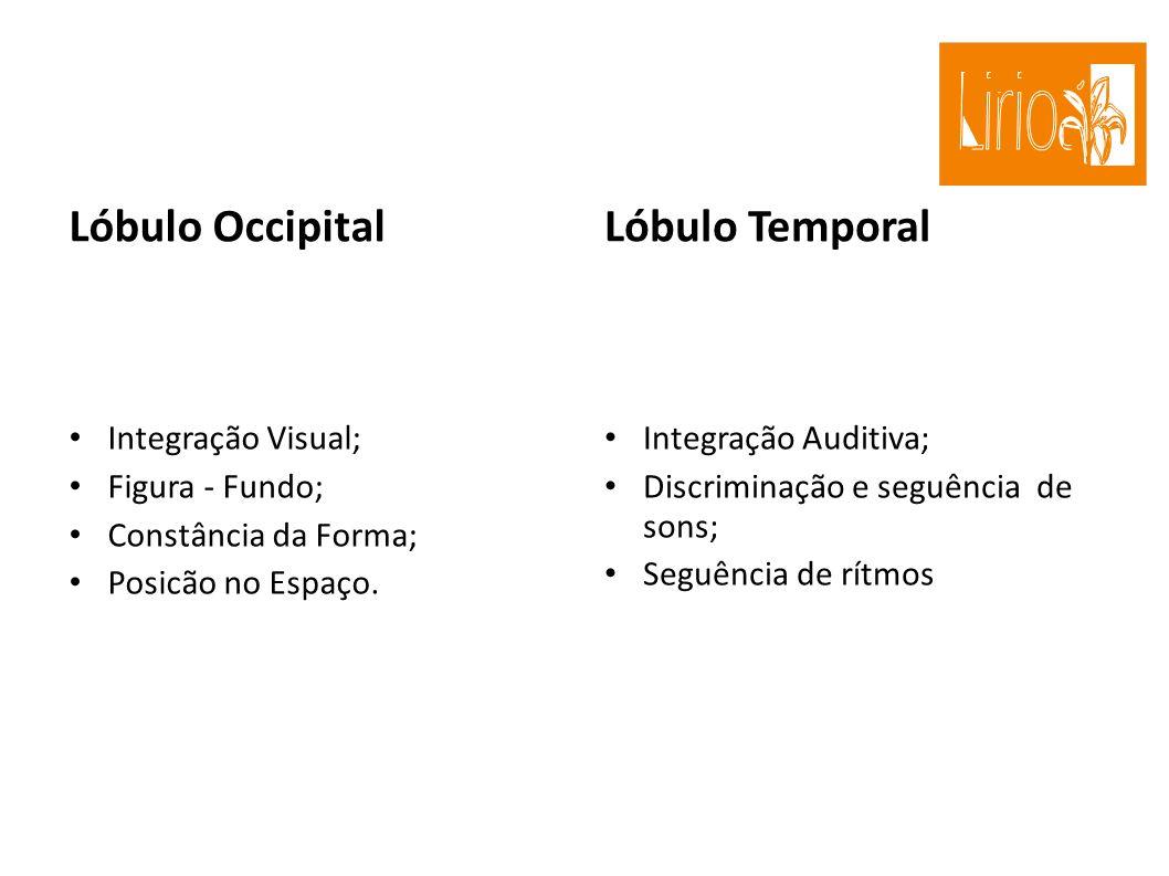Lóbulo Occipital Integração Visual; Figura - Fundo; Constância da Forma; Posicão no Espaço. Lóbulo Temporal Integração Auditiva; Discriminação e seguê