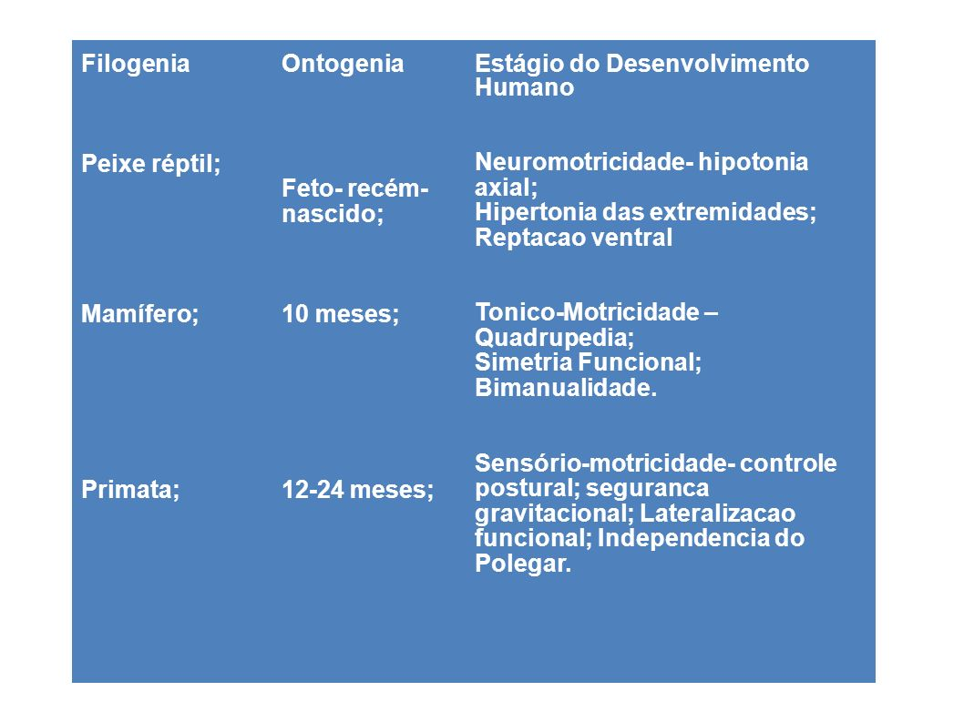 Filogenia/Ontogenia Homem - 6 anos; Homem- Adolescente Estágio do Desenvolvimento Humano Perceptivo-Motricidade- desenvolvimento da locomocao; dextralidade; assimetria funcional; Especializacao hemisferica, somatognosia Psicomotricidade- Desenvolvimento Práxico; melodia cinética; Planificacao Motora; Maturidade Sociomotora