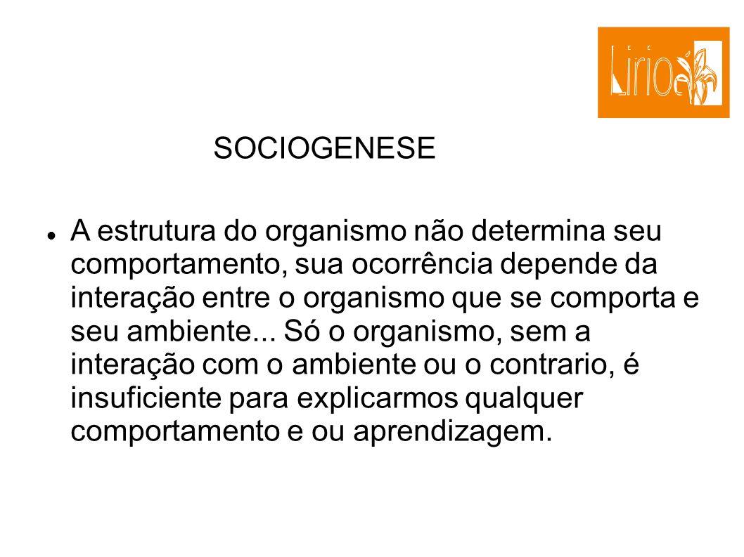SOCIOGENESE A estrutura do organismo não determina seu comportamento, sua ocorrência depende da interação entre o organismo que se comporta e seu ambi