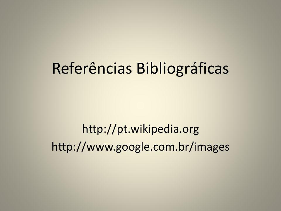 Referências Bibliográficas http://pt.wikipedia.org http://www.google.com.br/images