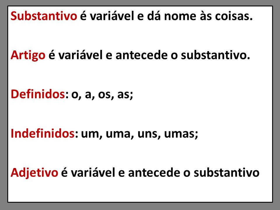 Substantivo é variável e dá nome às coisas.Artigo é variável e antecede o substantivo.