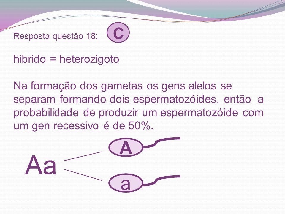 Resposta questão 18: C hibrido = heterozigoto Na formação dos gametas os gens alelos se separam formando dois espermatozóides, então a probabilidade d