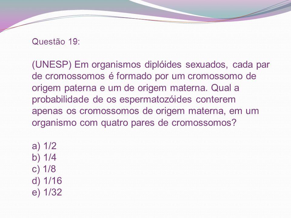 Questão 19: (UNESP) Em organismos diplóides sexuados, cada par de cromossomos é formado por um cromossomo de origem paterna e um de origem materna. Qu