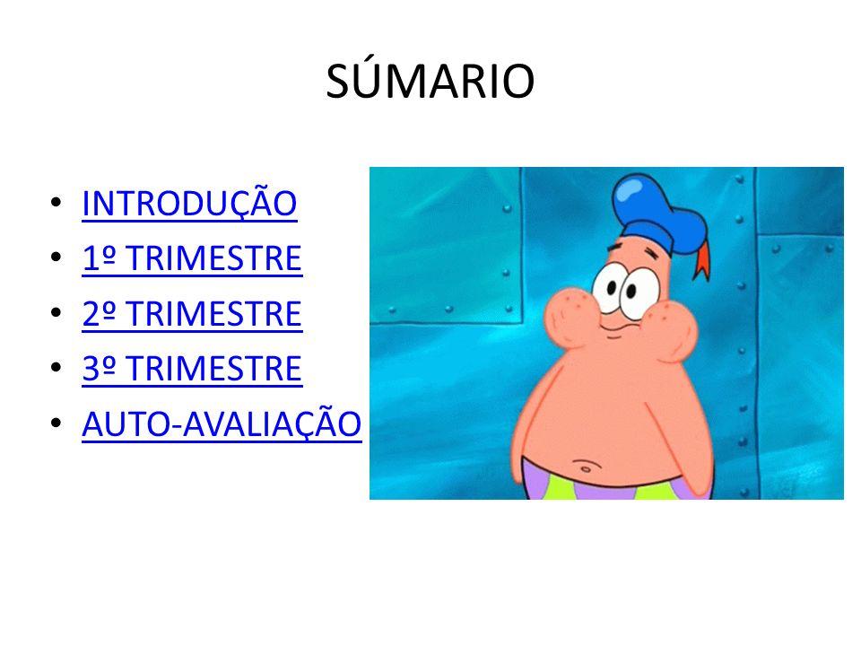 SÚMARIO INTRODUÇÃO 1º TRIMESTRE 2º TRIMESTRE 3º TRIMESTRE AUTO-AVALIAÇÃO
