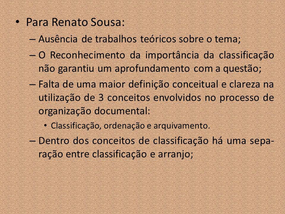 Para Renato Sousa: – Ausência de trabalhos teóricos sobre o tema; – O Reconhecimento da importância da classificação não garantiu um aprofundamento co