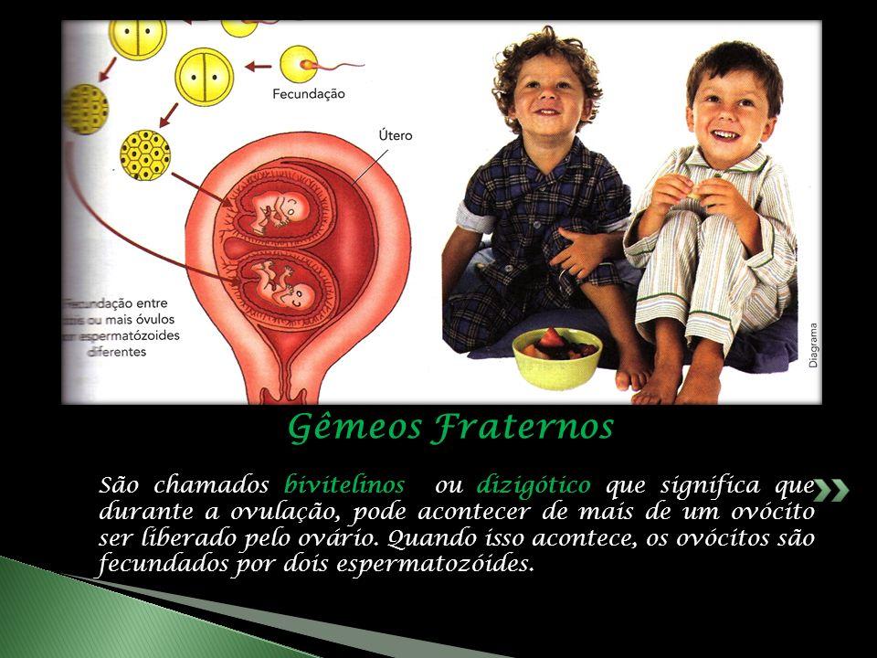 São chamados bivitelinos ou dizigótico que significa que durante a ovulação, pode acontecer de mais de um ovócito ser liberado pelo ovário.