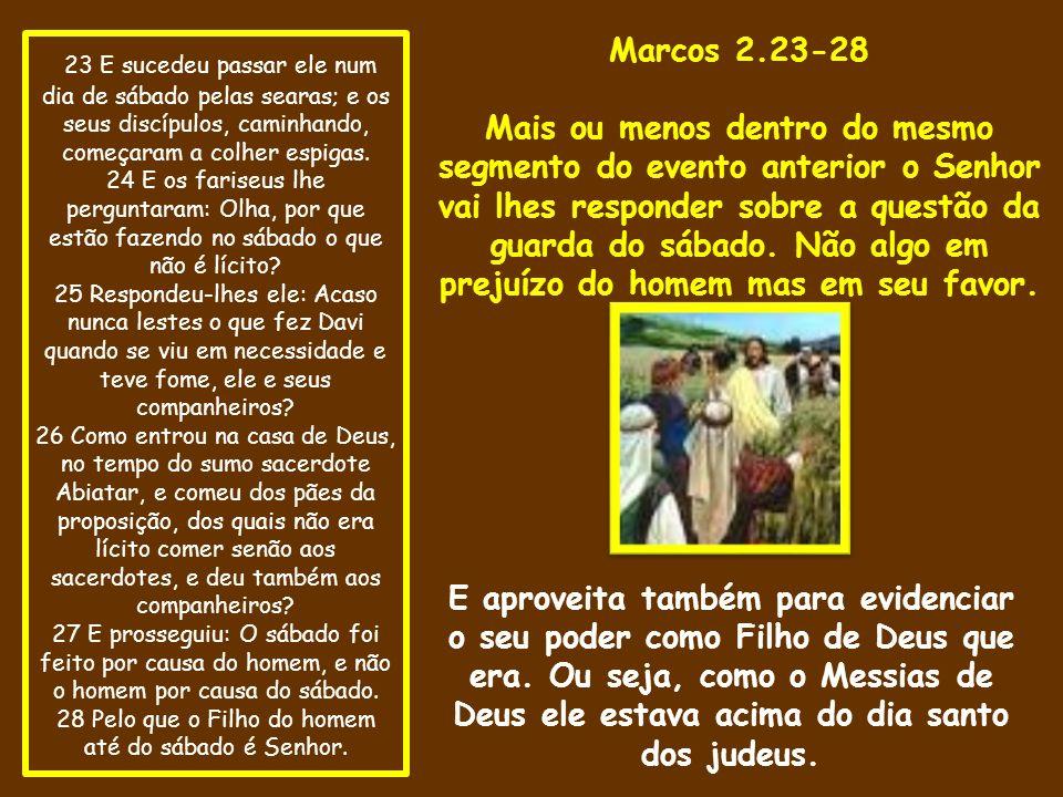 23 E sucedeu passar ele num dia de sábado pelas searas; e os seus discípulos, caminhando, começaram a colher espigas.