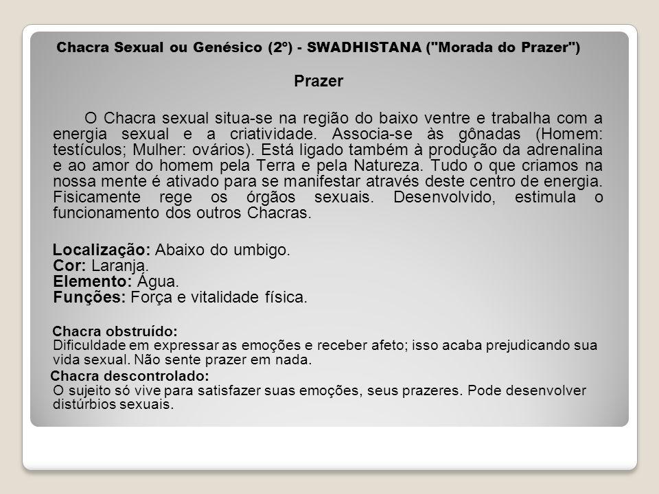 Chacra Sexual ou Genésico (2º) - SWADHISTANA (