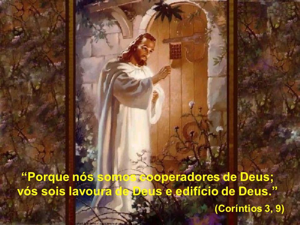 Porque nós somos cooperadores de Deus; vós sois lavoura de Deus e edifício de Deus. (Coríntios 3, 9)