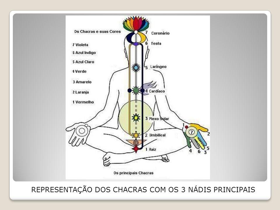 REPRESENTAÇÃO DOS CHACRAS COM OS 3 NÁDIS PRINCIPAIS