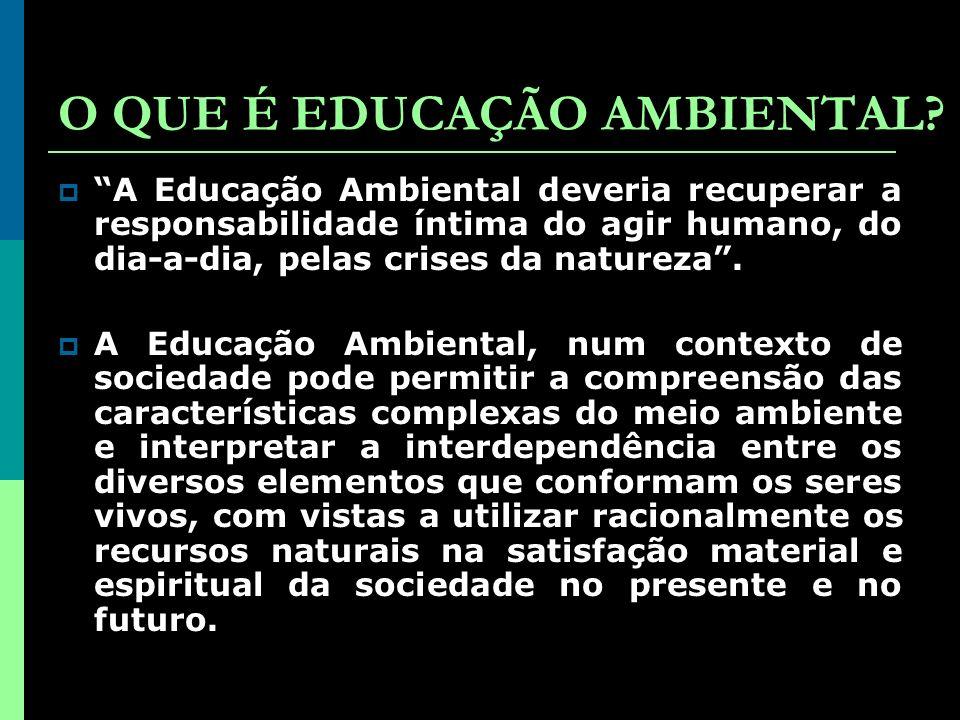 O QUE É EDUCAÇÃO AMBIENTAL.